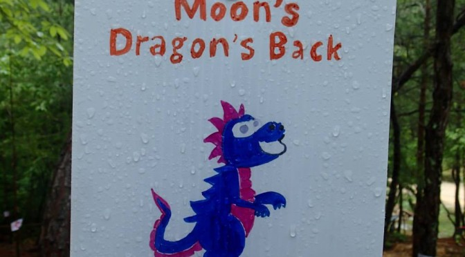 Moon's Dragon's Back